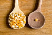 Viel und wenig Mais