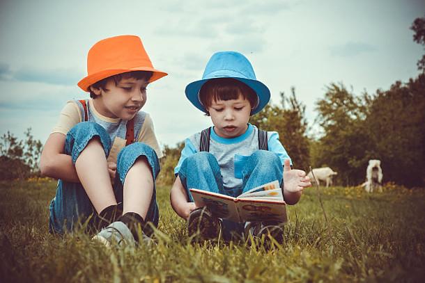 Zwei kleine Jungs auf einer Wiese.