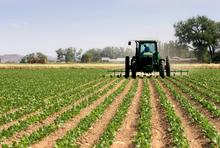 Landarbeit mit dem Traktor
