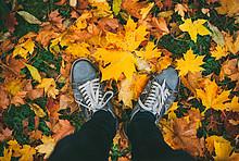 Die Heizsaison startet im Herbst.