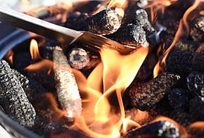 Das Grillen mit Maiskolben ohne Körner, sogenannte Maisspindel, die bei der Maisernte aussortiert werden, ist nachhaltiger als mit Holzkohle aus Tropenwäldern.