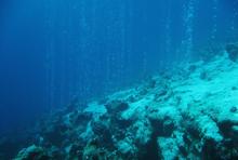 Unterwasser im Ozean