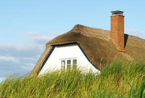 Haus mit Reet-Dach hinter Deich