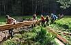 Freiwillige beim Arbeiten im Moor: 12 Menschen tragen lange Holzteile, im Hintergrund Wald