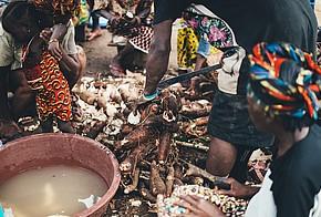 Afrikanische Frauen schälen Manjok