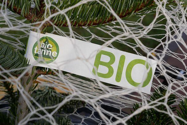 Banderole am Weihnachtsbaum im Baumwollnetz: Bio und biotanne
